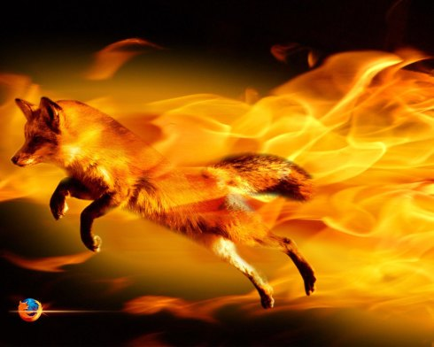 458-FireFox-1280